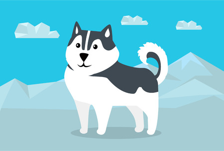 dog sled: Siberian husky dog breed on snowy mountains background. Flat design vector. Domestic friend and companion animal. For traveling concept, racing sled dogs ad, native species habitat illustrating