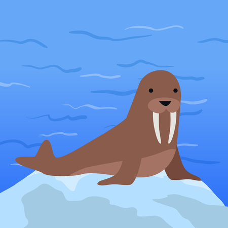 frisky: Funny walrus on background of arctic glacier. Brown walrus with white fangs. Animal adorable walrus vector character. Charming walrus. Wildlife character