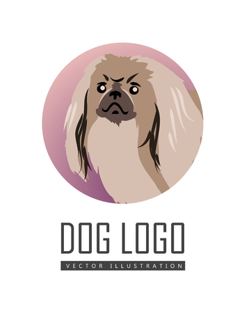 pekingese: Dog vector logo in flat style. Pekingese bust in the blue circle illustration for pet shop, breed club logotype, app icon, animal infogpaphics elements, web design. Isolated on white background
