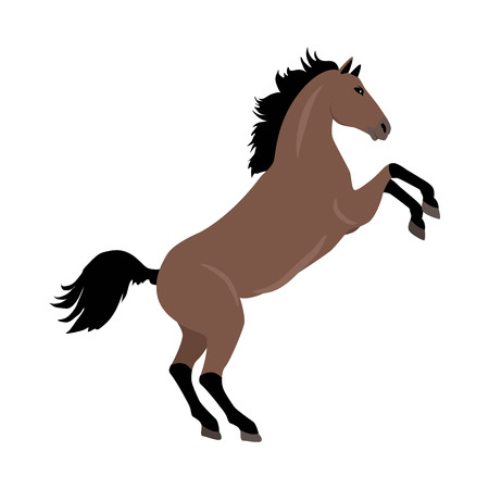 Rearing sorrel horse with hind legs vector. Flat design. Domestic animal. Country inhabitants concept. For farming, animal husbandry, horse sport illustrating. Agricultural species. Isolated on white Illustration