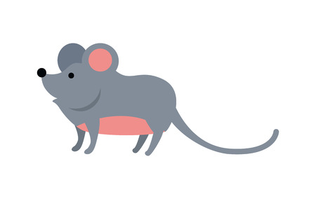 charming: Funny mouse isolated on white background. Gray mouse with pink ears and belly. Animal adorable mouse vector character. Charming humorous mouse. Wildlife character