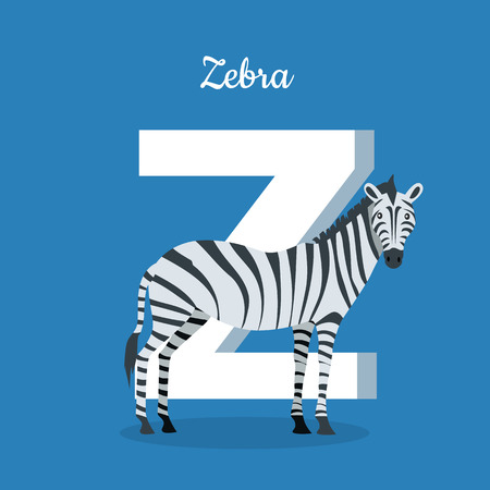 glossary: Animal alphabet vector concept. Flat style. Zoo ABC with wild animal. Zebra standing on blue background, letter Z behind. Educational glossary. For children s books, textbooks illustrating