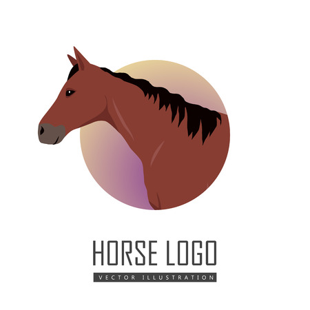 specie: Sorrel horse logo vector. Flat design. Domestic animal. Country inhabitants concept. For farming, animal husbandry, horse sport illustrating. Agricultural species. Isolated on white