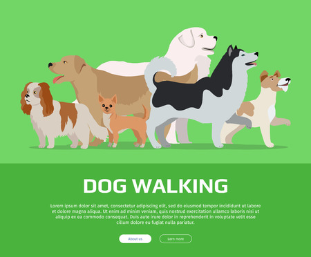 Dog walking conceptual web banner. Flat style vector. Group of purebred dogs standing on green background. Illustration for dog training courses, breed club landing page and corporate site design
