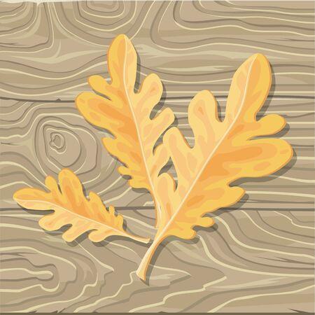 Oak leaf on wooden background. Flat style vector. Fallen orange tree leaf with broken limb.  Autumn defoliation. Season changes in nature. For enviromental concepts, prints, wallpapers, web design Illustration