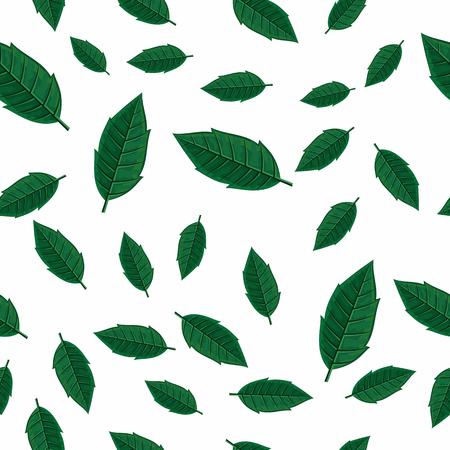 Fleurs vector seamless pattern. le style plat illustration. Tomber arbre feuilles vertes sur fond blanc. défoliation d'automne. Pour le papier d'emballage, carte de voeux, d'invitation, matériaux d'impression de conception Banque d'images - 67672002