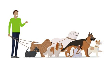 dog walking: Professional dog walking banner. Young man walking with group of different breeds dogs on white background. Dog service. Vector illustration in flat style. Cartoon dog character, pet animal Illustration
