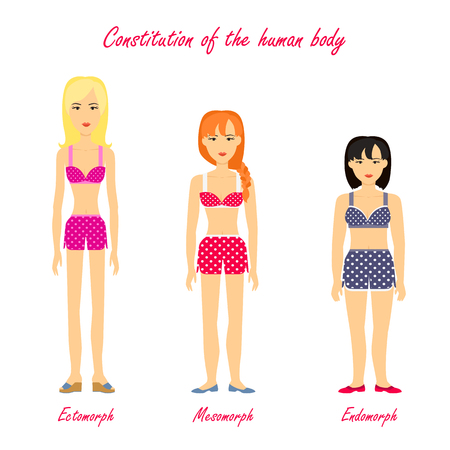 Constitution of human body. Ectomorph. Mesomorph. Endomorph. Women in underwear cloth. Girls different figures types. Somatotype and constitutional psychology concept. Vector illustration