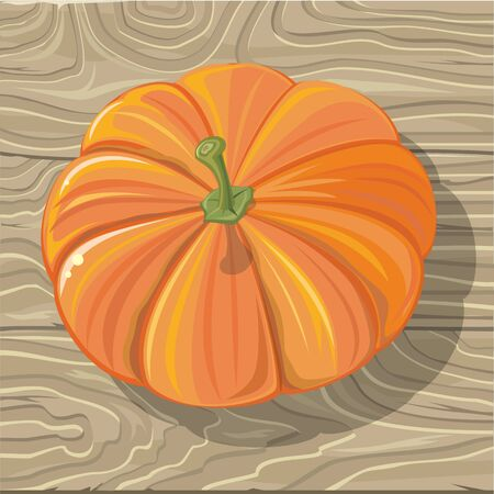 Ripe orange pumpkin on wooden background. Flat design vector. Vegetable on table. Healthy vegetarian organic food. Autumn harvest concept. Illustration for plant farm, grocery store ad
