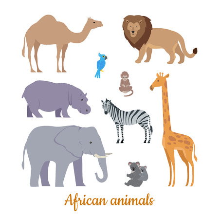 Collection of african animals Illustration