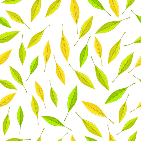 fall leaves on white: Seamless pattern with autumn leaves on white background. Autumnal illustration with yellow, green and silhouette leaves. Fall concept. Wallpaper and textile design. Floral leaf decor. Vector