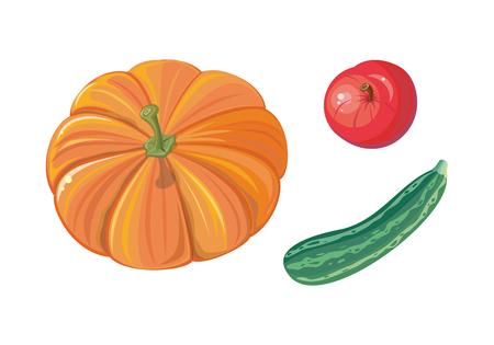 Set of autumn vegetables vectors. Flat design. Ripe orange pumpkin, red apple, striped green zucchini. Healthy vegetarian organic food. Harvest concept. Illustration for plant farm, grocery store ad