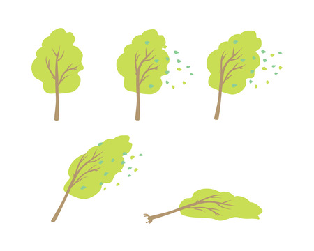 green leaves: wind topple tree vector. Flat design. Strong wind blows the leaves, tilt crone, bending trunk, topple tree. Visual measurements wind strength. For weather concepts. Illustration