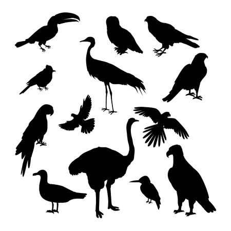 Set of birds silhouettes vector. Fauna template. Illustration for nature concepts, compositions, pet shop advertising. Parrot, jay, owl, many different birds silhouettes isolated on white background.
