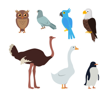 jaws: Set of birds isolated. Owl dove blue parrot eagle ostrich goose penguin. Collection of aves. Group of toothless beaked jaws birds, laying of hard-shelled eggs. Stickers for children. Vector