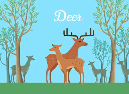 Funny pair of deer on background of forest. Pair of deer walking on grass in forest. Animal deer with large horns vector character. Charming deer. Wildlife character
