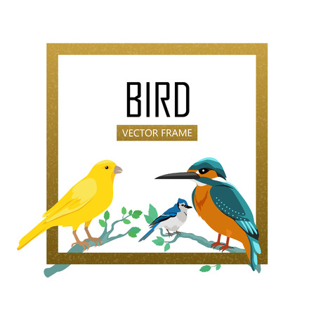 Kingfisher Birds Frame Vector Colored Wildlife Concept In Flat Design Word Fauna Illustration