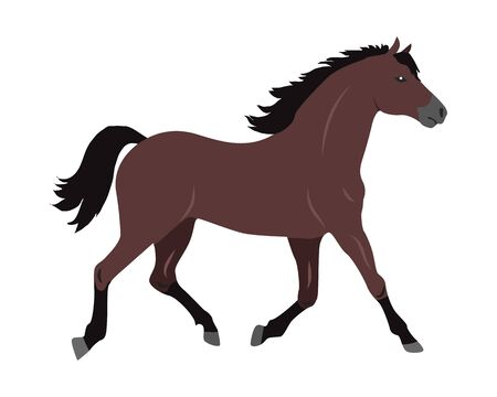 Horse Vector Illustration in Flat Design Illustration