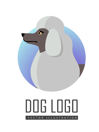 Dog Logo Vector of White Standard Poodle Isolated. Stock Photo