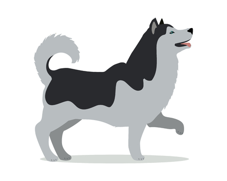 Huskies in Stand on White Background Illustration