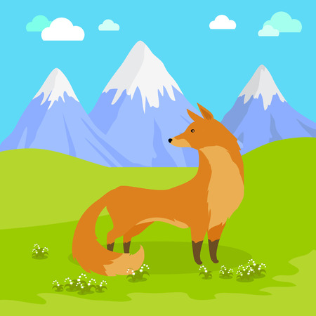 Red fox vulpes standing on the meadow in the mountains. Cute wild animal with flattened skull, upright triangular ears, pointed snout, and long bushy tail. Cartoon banner. Vector design illustration Illustration