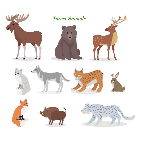 Forest Animals Set. Wildlife Characters. Vector
