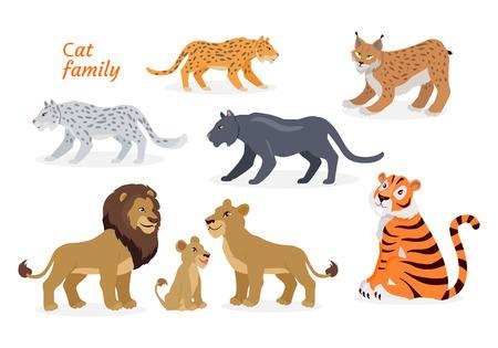Cat family. Felidae. Pantherinae Tiger Lion Jaguar Illustration