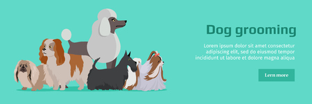 Dog Grooming Banner. Long Haired Dog Breeds