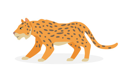 Jaguar, Wild Cat Panther Isolated on White. Illustration