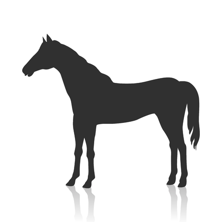 Sorrel Horse Vector Illustration in Flat Design Illustration