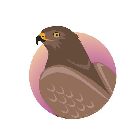Hawk Flat Design Vector Illustration