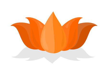 National Symbol of India. Lotus Flower Isolated