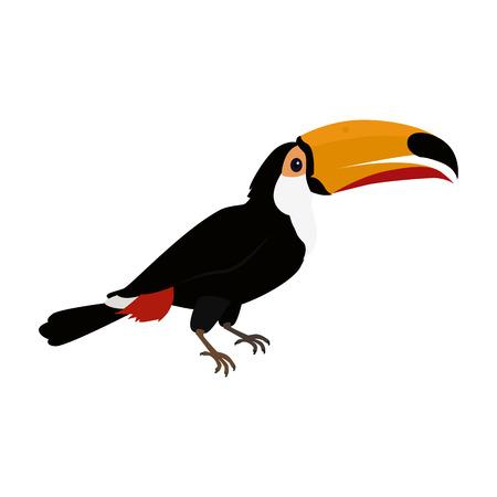 Toucan Bird Flat Design Vector Illustration Illustration