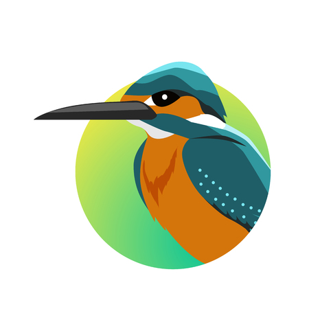 Kingfisher Flat Design Illustration