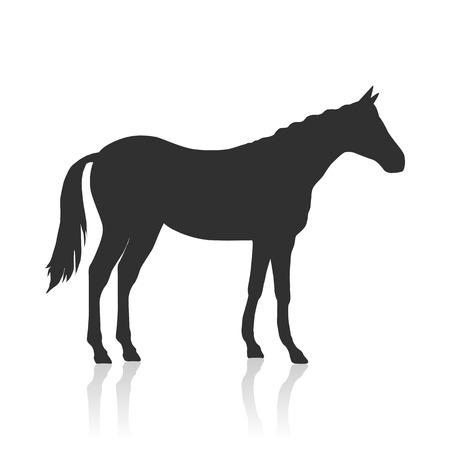 Sorrel Horse Illustration