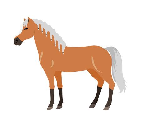 Horse  Illustration in Flat Design Illustration
