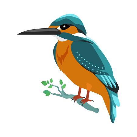 Ilustracja wektorowa Kingfisher płaska Ilustracje wektorowe
