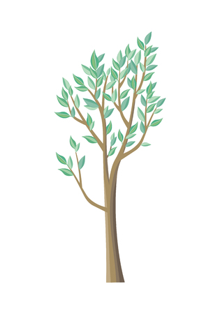 plant tree: Tree with green leaves. Vector tree icon. Tree forest, leaf tree isolated, tree branch nature green, plant eco branch tree, organic natural wood illustration. Vector illustration Illustration