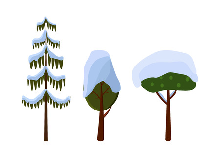 evergreen trees: Tree Evergreen Trees Covered with Snow. Winter Illustration