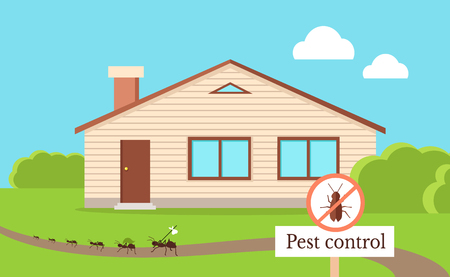 Pest Control Concept with Cockroach Leaving House