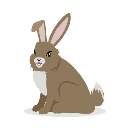 Hare Cartoon Vector Illustration in Flat Design