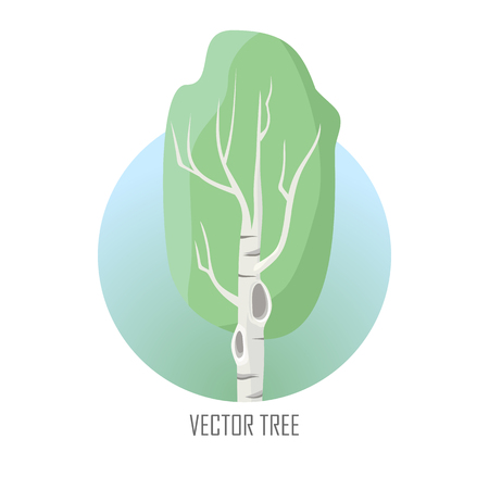 Artistic Vector Tree. Birch Isolated on White. Vector