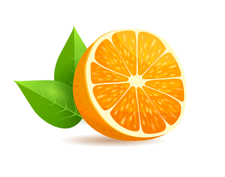 Sliced in Half Orange with Leaves Realistic Vector Ilustrace