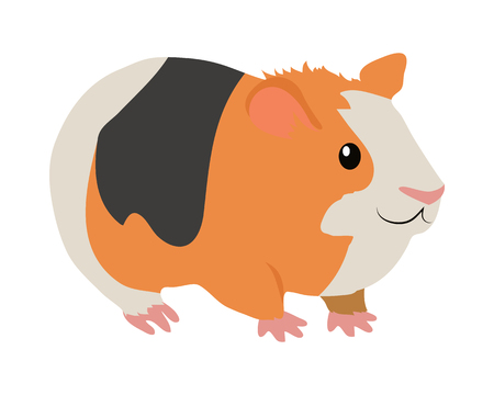 Guinea Pig Cartoon Icon in Flat Design