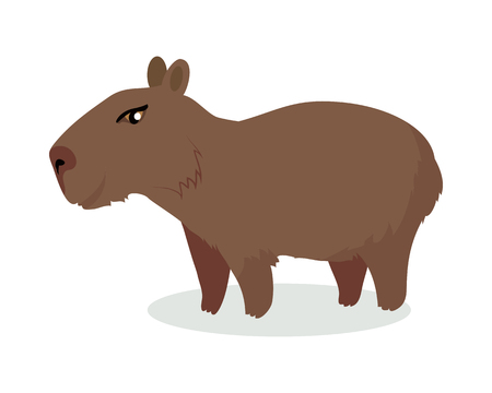 197 Capybara Stock Illustrations Cliparts And Royalty Free Capybara