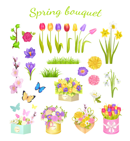 Concept of Beautiful Spring Bouquet Color Flowers Illustration