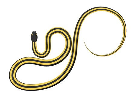 ectothermic: Slither Ribbon or Garter Snake Vector Icon