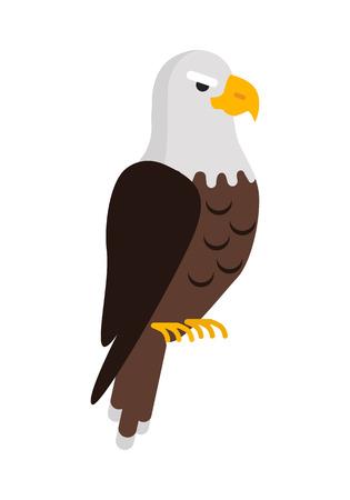 Eagle Large Bird of Prey Cartoon Isolated on White