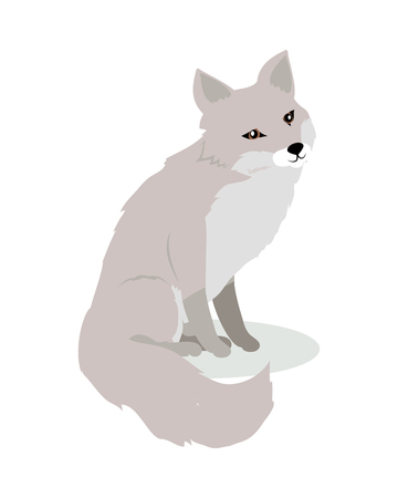 Fox Cartoon Vector Illustration in Flat Design 向量圖像