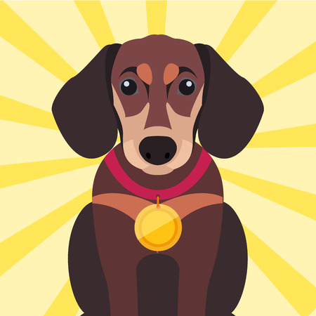 Brown Dachshund Close-up with Gold Medal on Neck